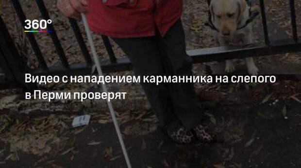 Видео с нападением карманника на слепого в Перми проверят