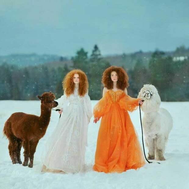 После оглушительного успеха Анастасия Добровольская решила посвятить себя фотографии целиком.