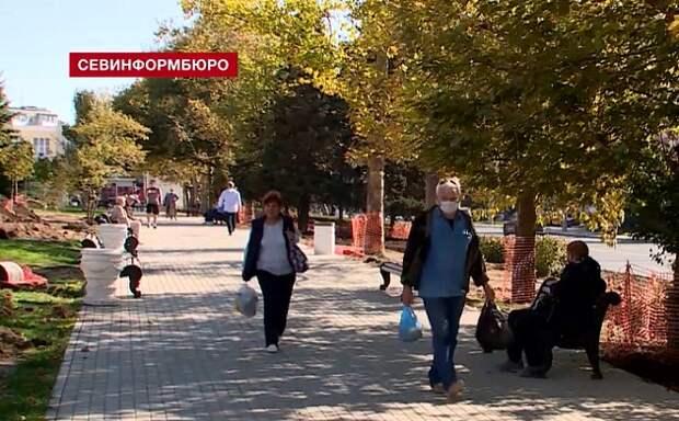 Севастопольские деревья уничтожат за московские деньги