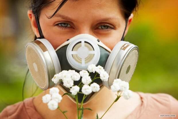 10 странных фактов об аллергии, которые стоит знать и абсолютно здоровым людям