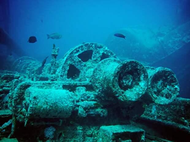 Боевая техника на дне океана привлекает дайверов / Фото: yandex.ua