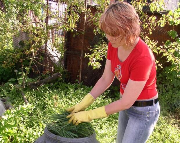 травяной настой для овощей.JPG