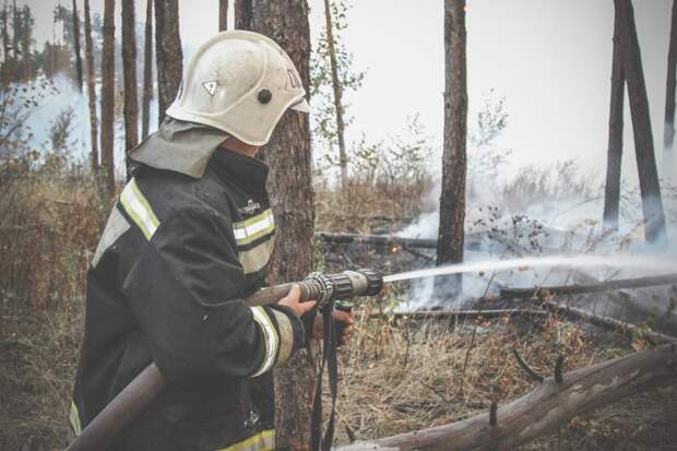 Режим ЧС объявили из-за пожаров в Воронежской области