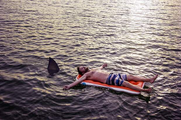 Морской заповедник закрыли в Египте после того, как акула напала на людей