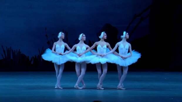 Любить нас они могут только в качестве маленьких лебедей большого театра