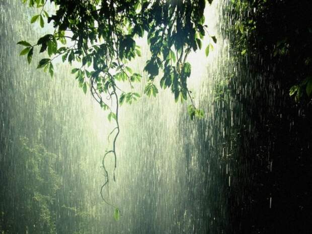 В Севастополе три дня будет плохая погода