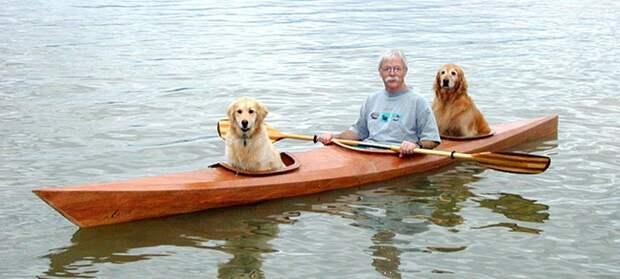 Мужчина создал особенную байдарку, чтобы брать своих собак впутешествия