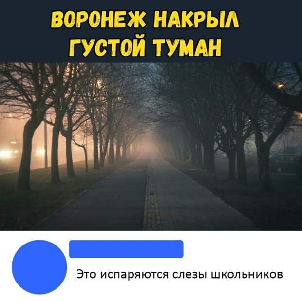 Подборка картинок с надписями (30 фото)
