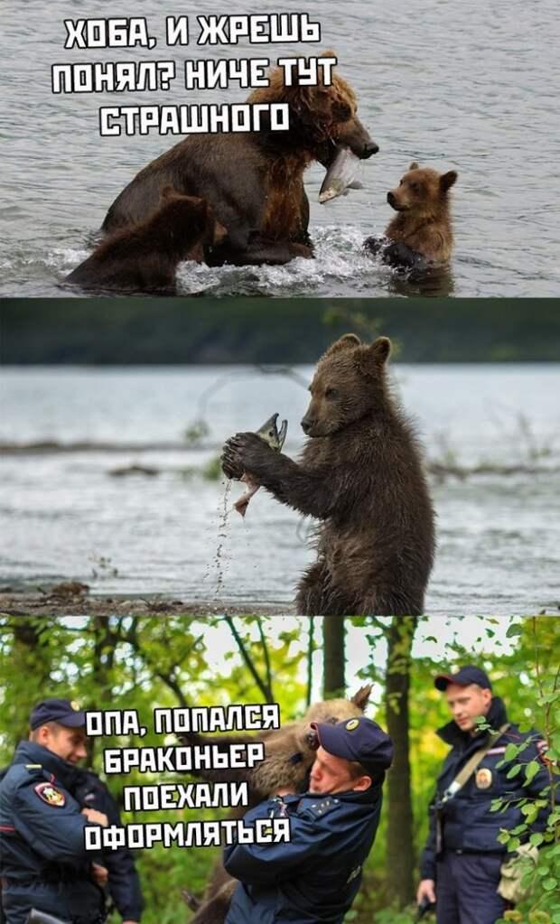 Забавные, веселые и смешные фотографии с надписями вместе с прикольными картинками из сети
