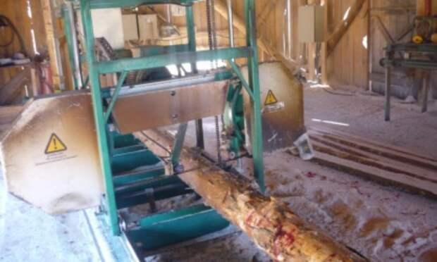 В Вилегодском районе  на пилораме рабочему отрезало ногу