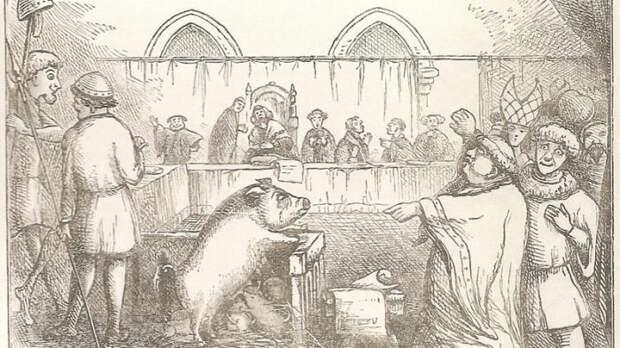 В средневековой Европе животных судили наравне с людьми. Самое раннее упоминание этого — суд над свиньёй в 1266 году в Фонтеней-о-Роз исторические факты, история, факты, человечество