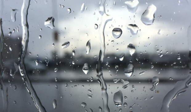 Дождь иветер ожидаются вНижнем Тагиле на выходных