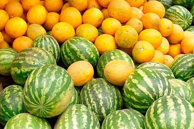5 хитростей для богатого урожая бахчи