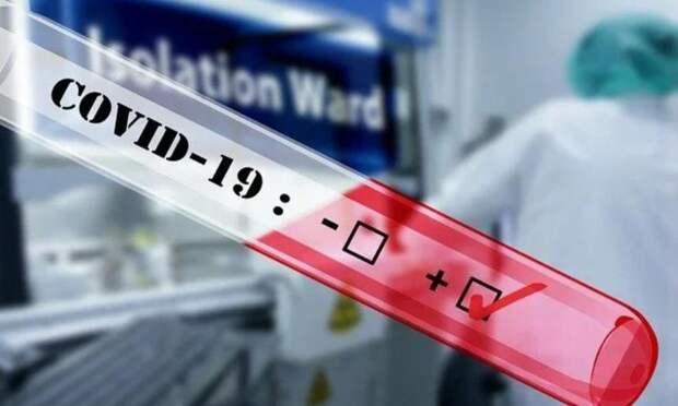 В Архангельской области за сутки выявили 224 новых случая заражения коронавирусом