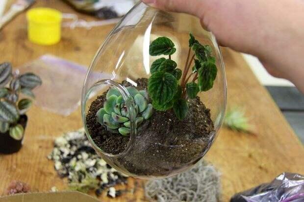 подвесной флорариум своими руками 04