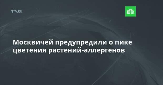 Москвичей предупредили о пике цветения растений-аллергенов