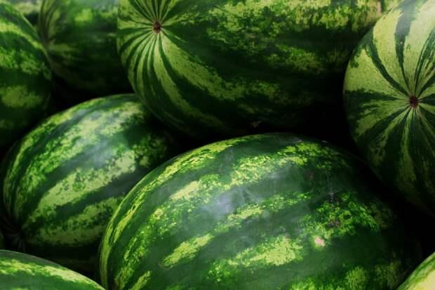 Постучать, надавить и не только: 7 правил по выбору самого лучшего арбуза