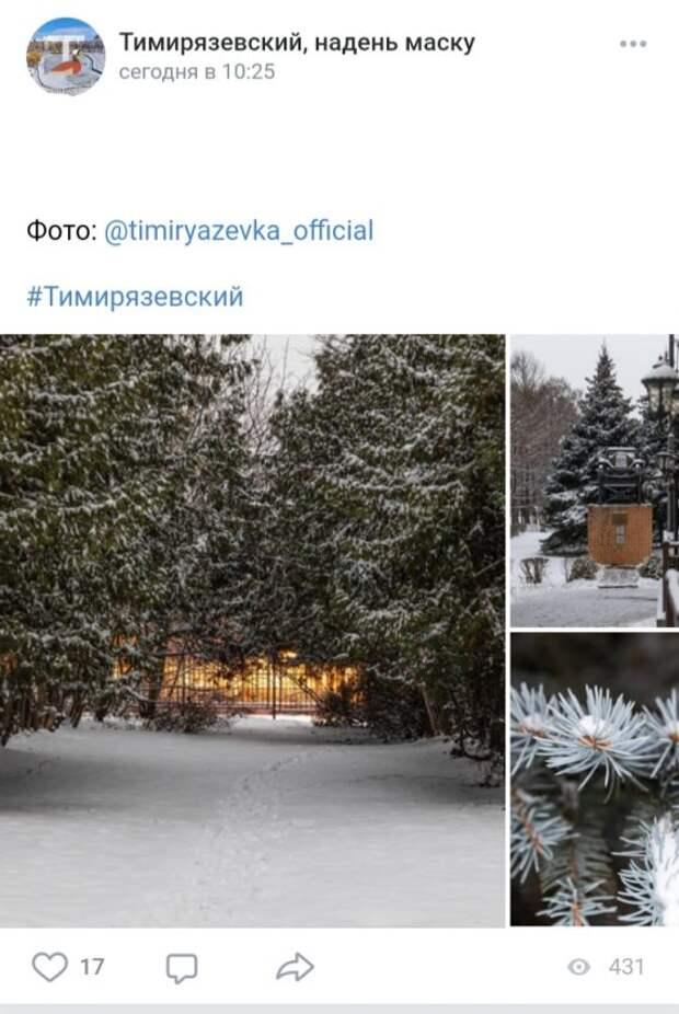 Фото дня: Тимирязевка в снежные дни