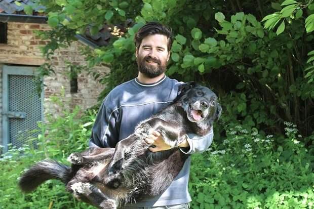 Человек, собака, дом: история дружбы в трех фотографиях животные, собака