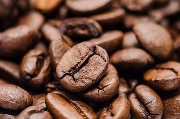 Учёные исследовали мозг людей, регулярно употребляющих кофе