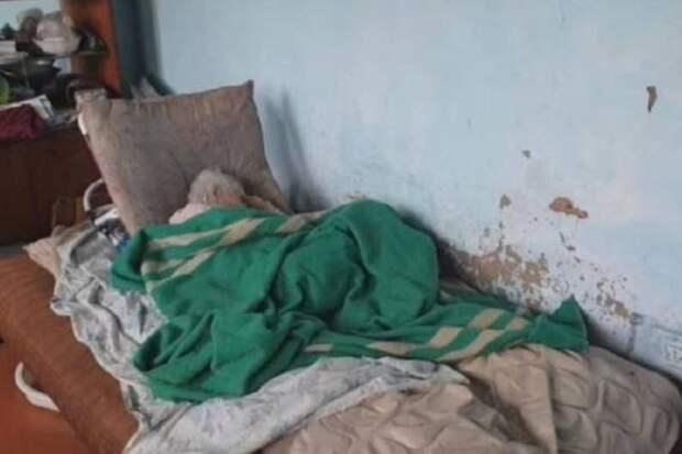 СК Приморья проверит информацию о вдове ветерана, проживающей в ужасных условиях