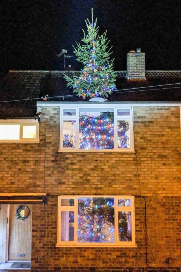 Британец поставил самую оригинальную рождественскую елку