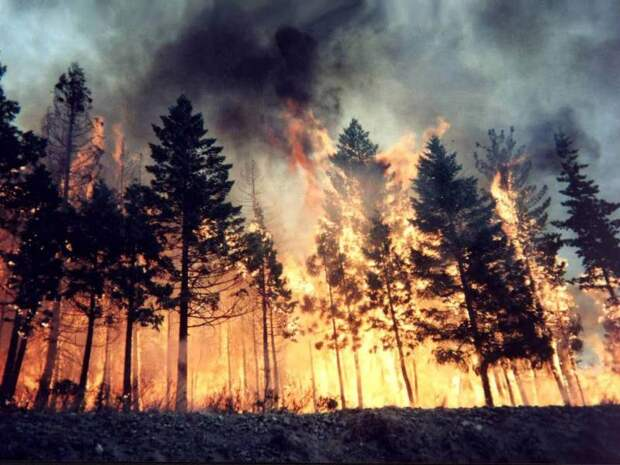 Не климатит! COVID-19 не спасёт планету от потепления