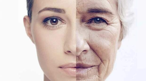 Немецкие ученые разработали метод точного определения биологического возраста