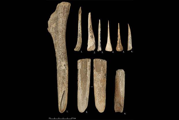 Московские археологи изучили быт владимирского кроманьонца