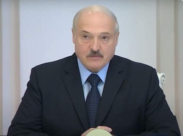 Лукашенко заявил, что протесты устраивают безработные, и попросил их трудоустроиться