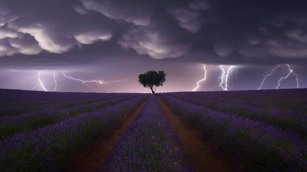Ученые выяснили, когда молния бьет в одно место дважды
