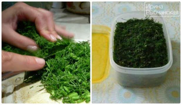 Петрушка, укроп, сельдерей – отличные способы заготовки зелени на зиму