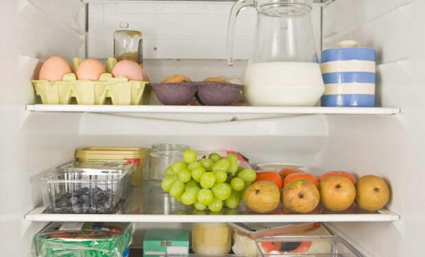 Еда в холодильнике: расставляем продукты, чтобы они лежали свежими вдвое дольше