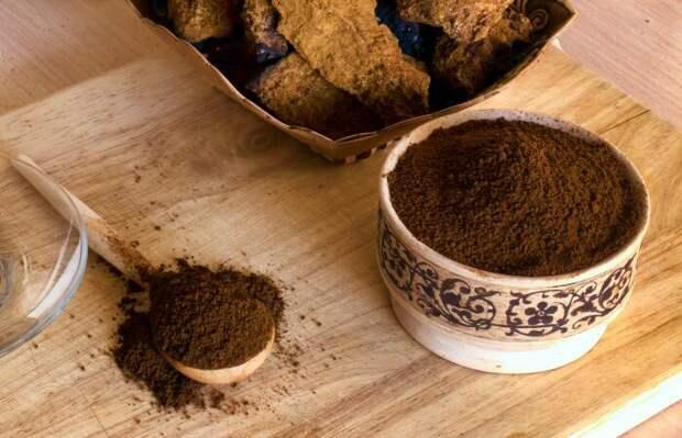 Трутовик скошенный более 500 лет применяется в лечебных целях / Фото: grib-doma.ru