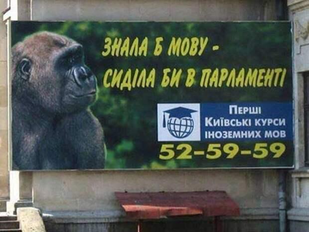 Донецк – вот, лето пролетело…