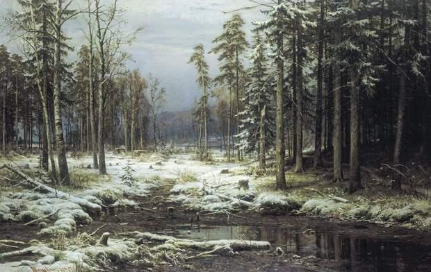 20 прекрасных картин Ивана Шишкина, которые нужно увидеть хотя бы раз в жизни!