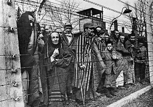 Онлайн. Круглый стол «Узники нацистских лагерей: освобождение и память»