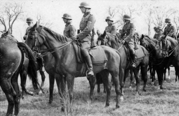Bundesarchiv_Bild_101III-Adendorff-002-18A,_Russland,_SS-Kavallerie-Brigade