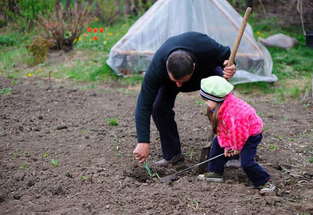 Главное правило обустройства детского огорода: создавайте его вместе с ребенком
