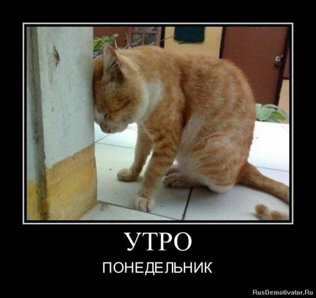 3180456_vakivk (640x604, 61Kb)