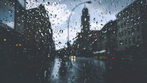 Дождливая погода с сильными порывами ветра сохранится в Московском регионе до конца недели