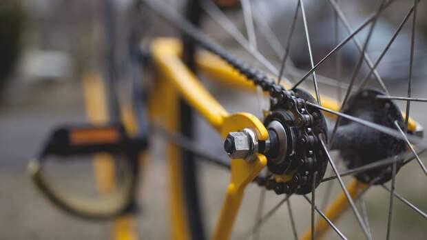Велотранспортный союз оценил идею создания велотрассы Москва — Владивосток