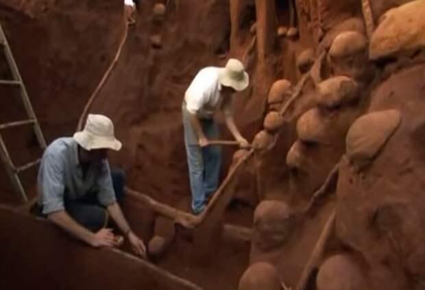 Учёные раскопали колоссальный подземный город муравьёв - видео-08