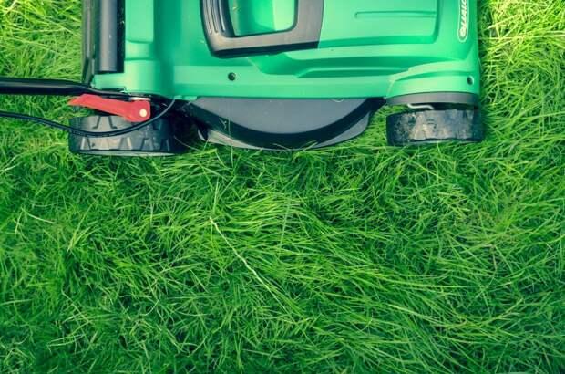 Коммунальщики покосили газон на Синявинской