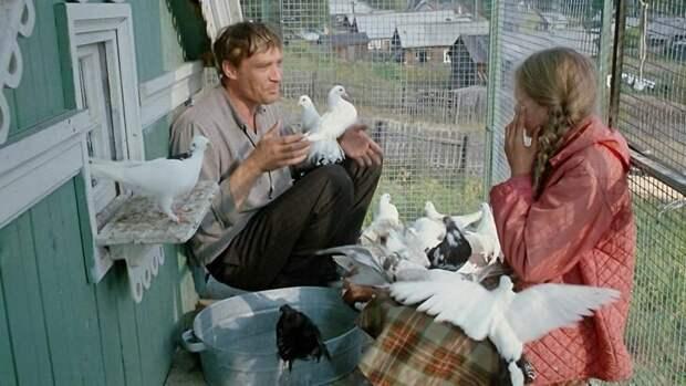 20+ фактов о всеми любимой комедии «Любовь и голуби», которую когда-то вообще не хотели выпускать в прокат
