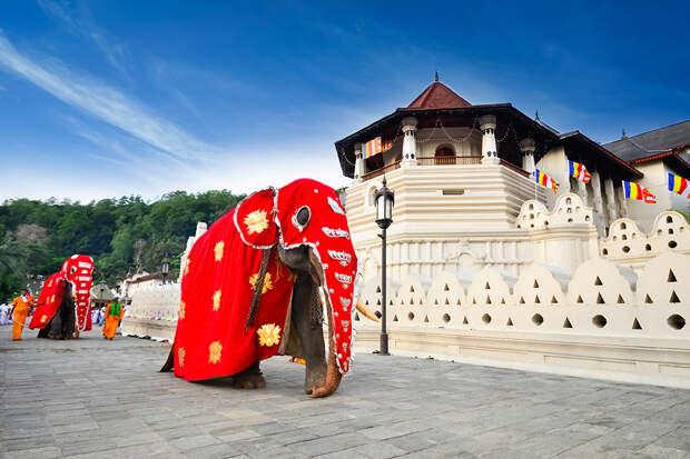 Власти Шри-Ланки смягчат ограничения по въезду туристов