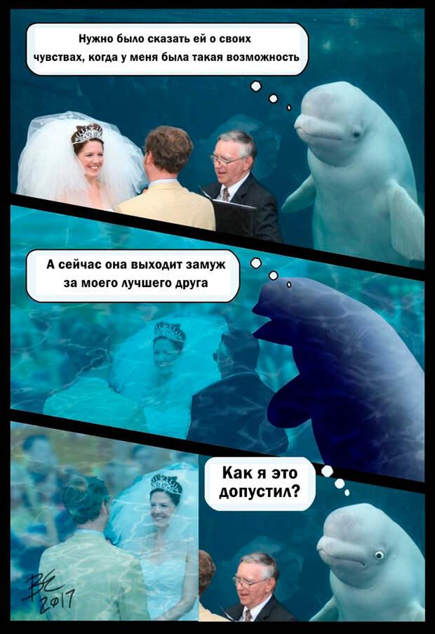 Белуха случайно попала в кадр жениха и невесты, и теперь он стал мемом