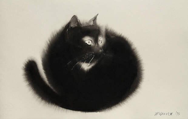 Этот котик расплылся
