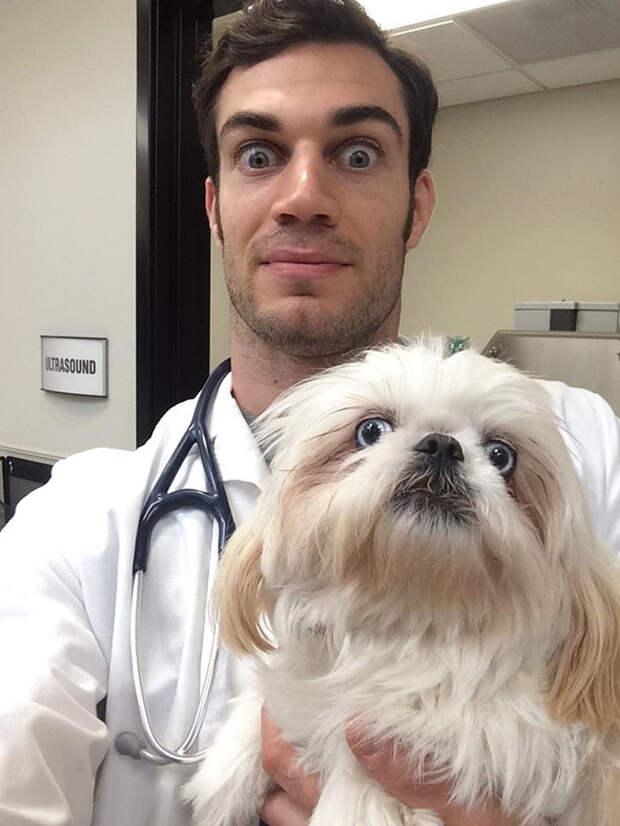 18.  ветеринар, красавец, мужчина