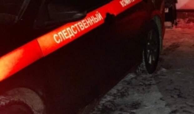 СКначал проверку из-за гибели двух рыбаков вРостовской области